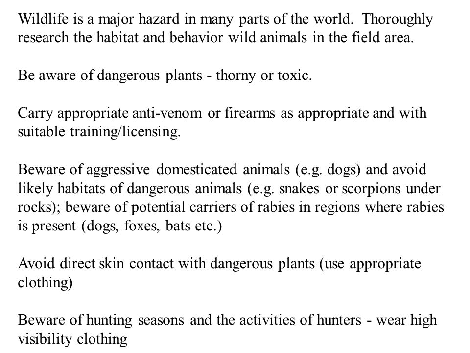 Wildlife is a major hazard in many parts of the world.