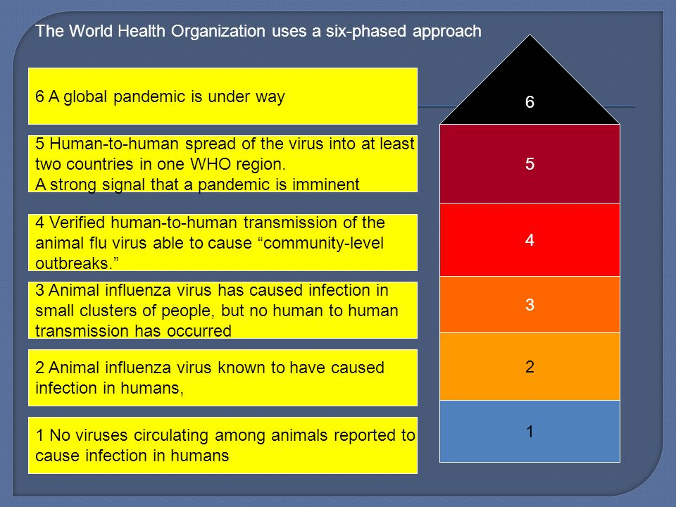 No viruses circulating among animals reported to cause infection in humans 2 Animal influenza virus known to have caused infection in humans, 3 Animal influenza virus has caused infection in small clusters of people, but no human to human transmission has occurred 4 Verified human-to-human transmission of the animal flu virus able to cause community-level outbreaks. 5 Human-to-human spread of the virus into at least two countries in one WHO region.