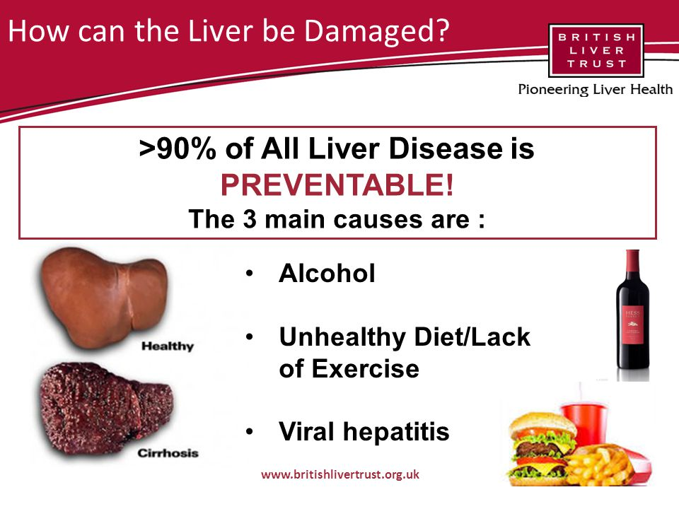 How can the Liver be Damaged.