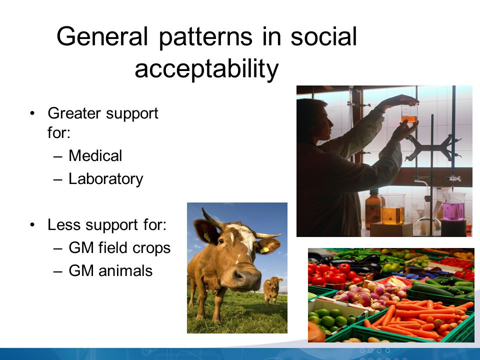General patterns in social acceptability Greater support for: –Medical –Laboratory Less support for: –GM field crops –GM animals