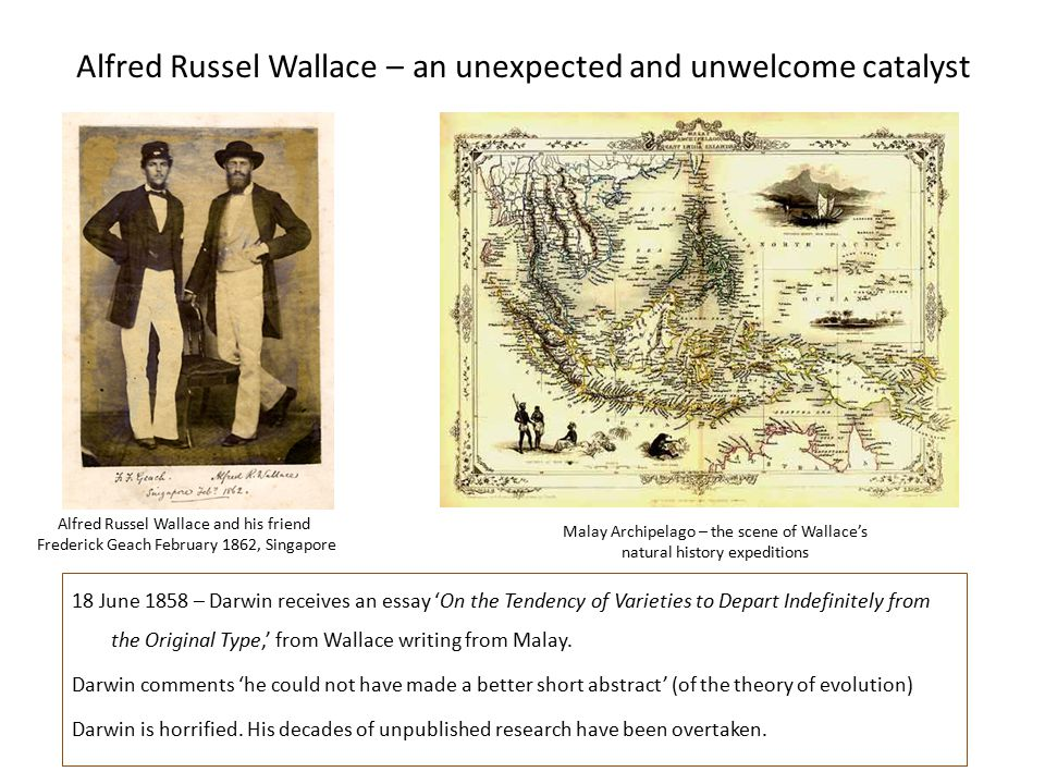Alfred Russel Wallace – an unexpected and unwelcome catalyst 18 June 1858 – Darwin receives an essay 'On the Tendency of Varieties to Depart Indefinitely from the Original Type,' from Wallace writing from Malay.