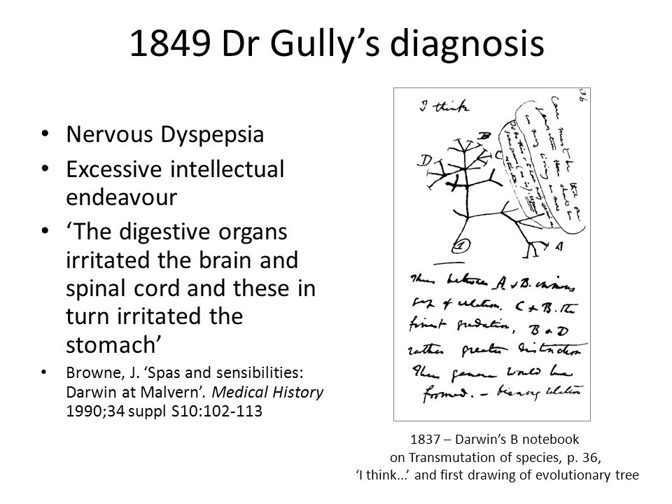 1849 Dr Gully's diagnosis Nervous Dyspepsia Excessive intellectual endeavour 'The digestive organs irritated the brain and spinal cord and these in turn irritated the stomach' Browne, J.
