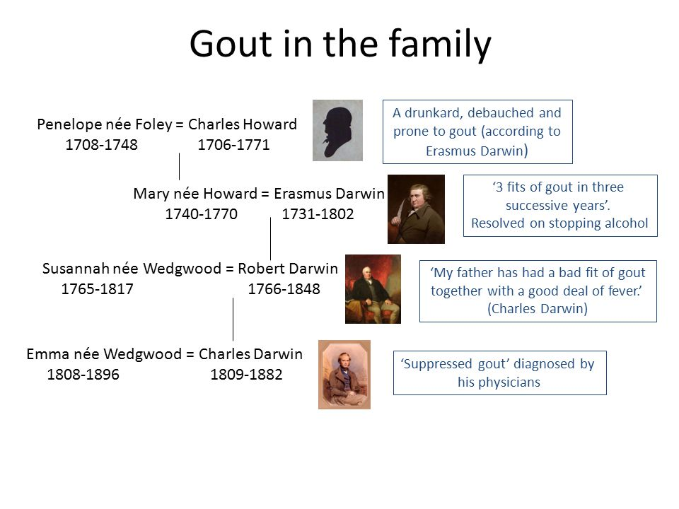 Gout in the family Penelope née Foley = Charles Howard 1708-1748 1706-1771 Mary née Howard = Erasmus Darwin 1740-1770 1731-1802 Susannah née Wedgwood = Robert Darwin 1765-1817 1766-1848 Emma née Wedgwood = Charles Darwin 1808-1896 1809-1882 A drunkard, debauched and prone to gout (according to Erasmus Darwin ) '3 fits of gout in three successive years'.