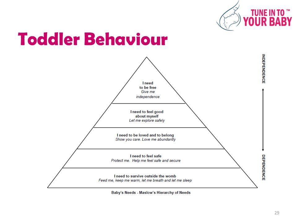 Toddler Behaviour 29