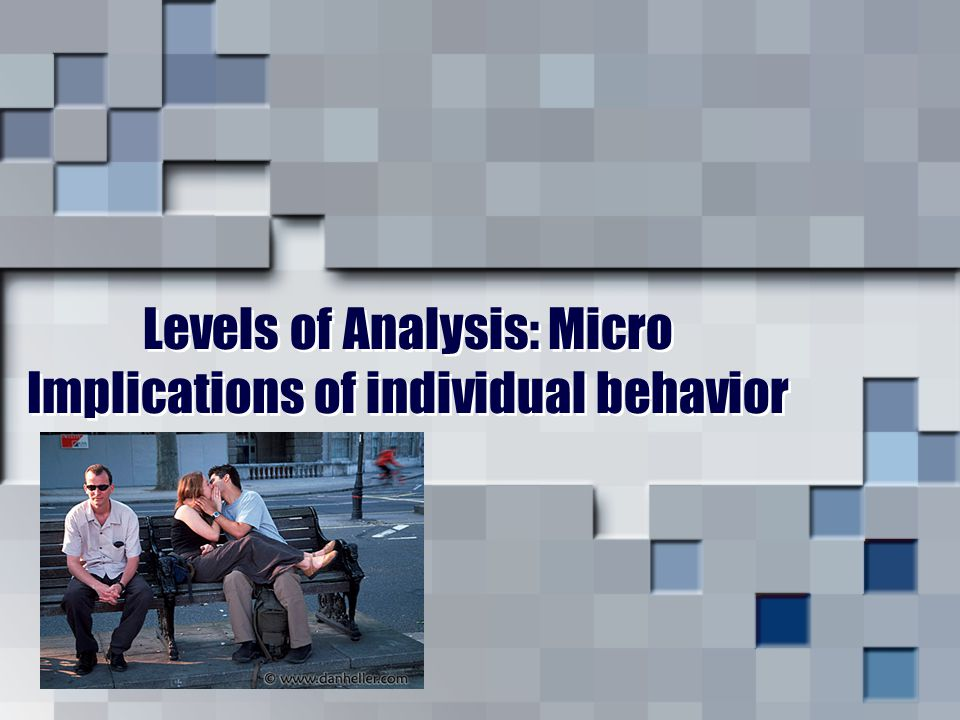 Levels of Analysis: Micro Implications of individual behavior