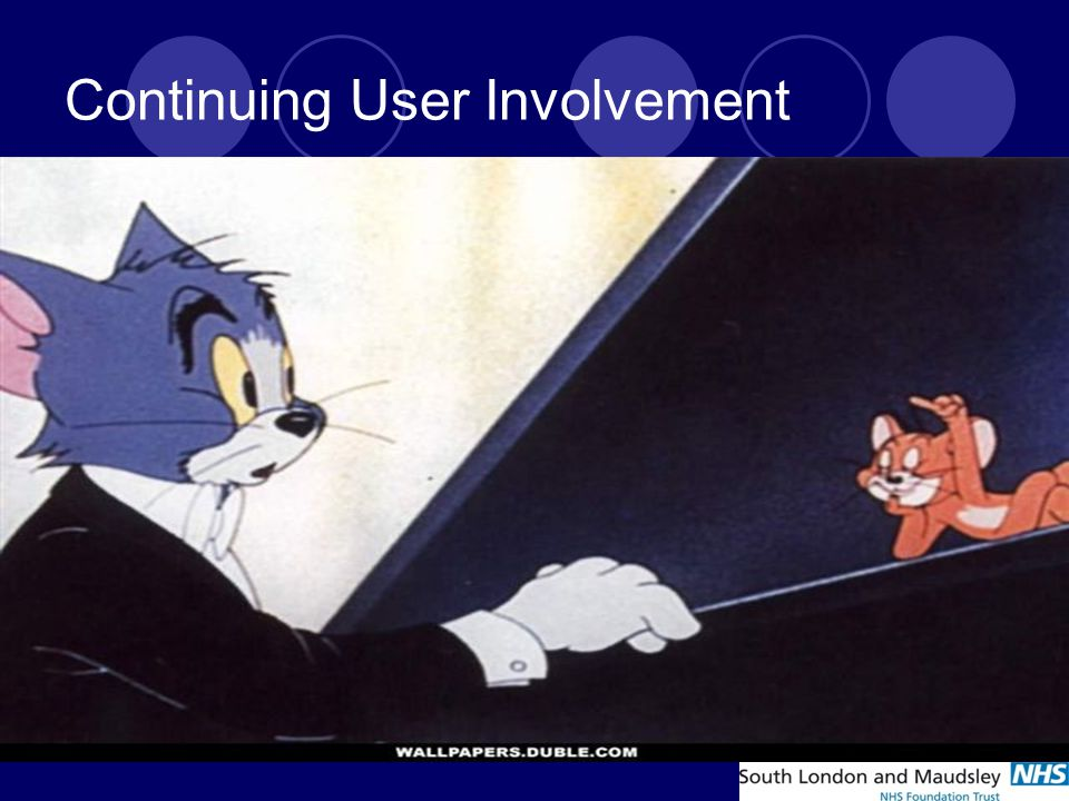 Continuing User Involvement