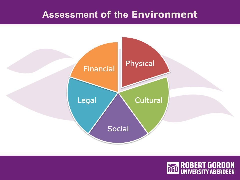 Assessment of the Environment Physical Cultural Social Legal Financial