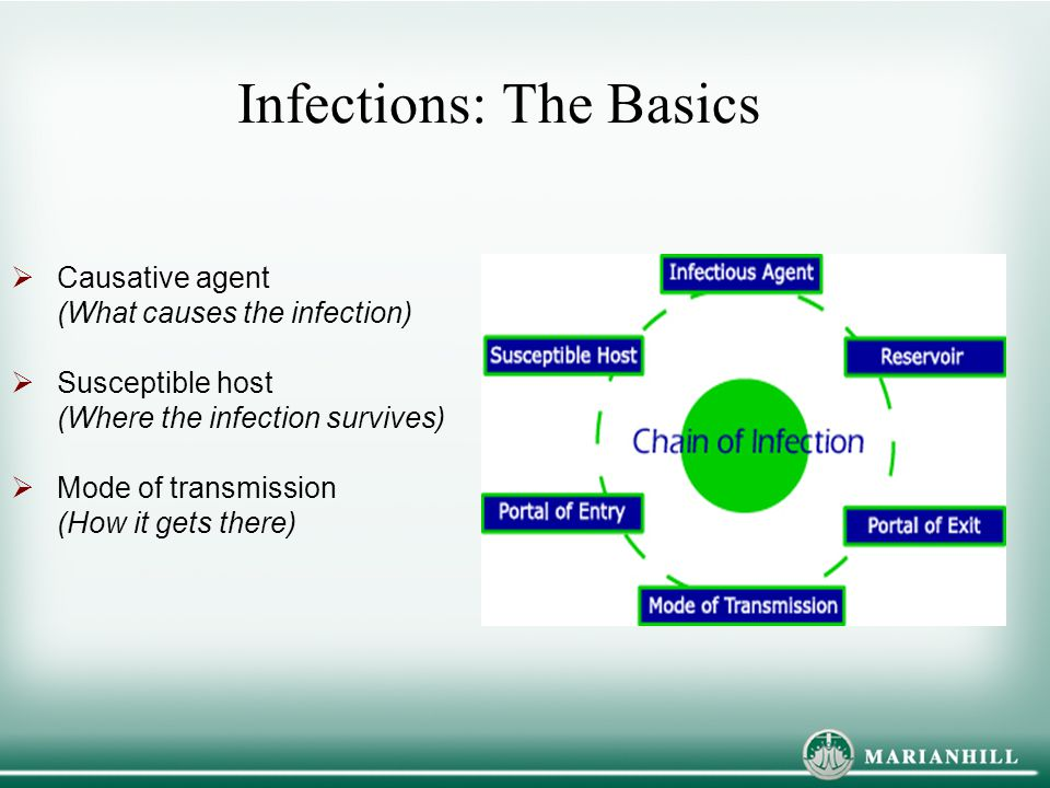 Infections: The Basics  Causative agent (What causes the infection)  Susceptible host (Where the infection survives)  Mode of transmission (How it