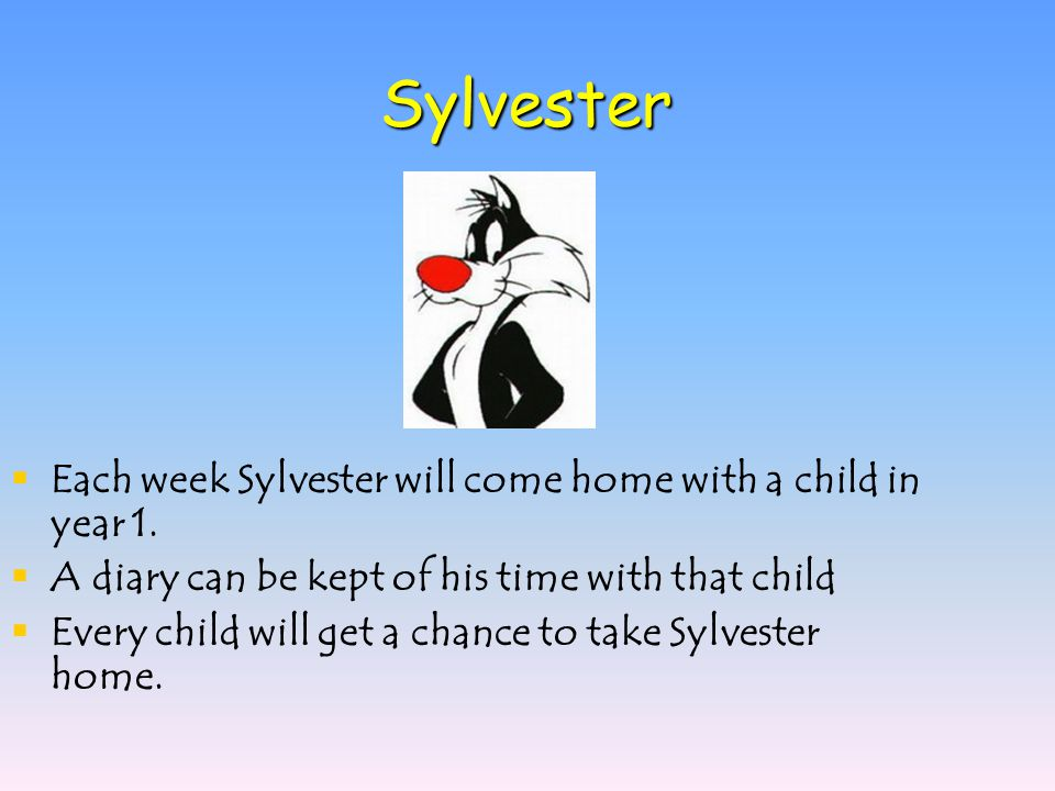 Sylvester  Each week Sylvester will come home with a child in year 1.  A diary can be kept of his time with that child  Every child will get a chan