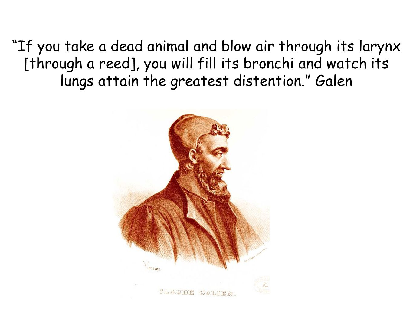If you take a dead animal and blow air through its larynx [through a reed], you will fill its bronchi and watch its lungs attain the greatest distention. Galen