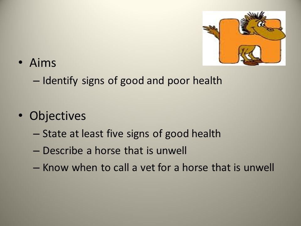 Aims – Identify signs of good and poor health Objectives – State at least five signs of good health – Describe a horse that is unwell – Know when to call a vet for a horse that is unwell