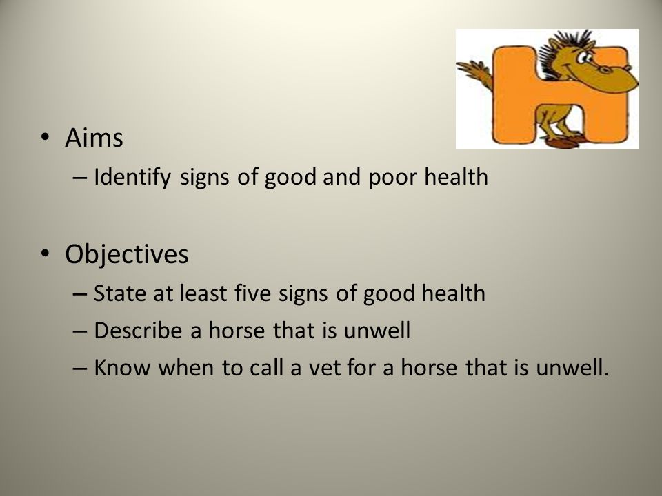 Aims – Identify signs of good and poor health Objectives – State at least five signs of good health – Describe a horse that is unwell – Know when to call a vet for a horse that is unwell.