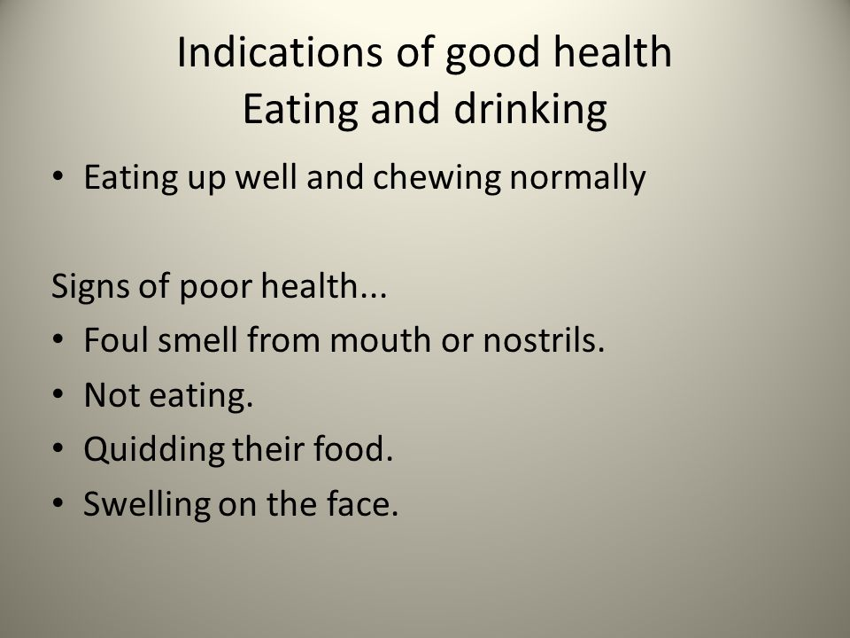 Indications of good health Eating and drinking Eating up well and chewing normally Signs of poor health...