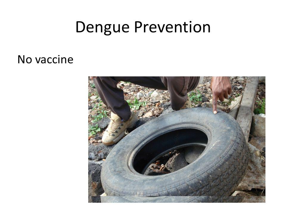 Dengue Prevention No vaccine