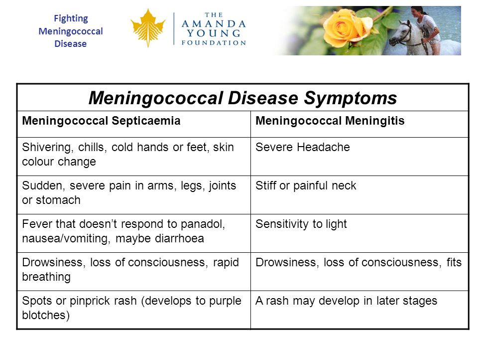 Fighting Meningococcal Disease Meningococcal Disease Symptoms Meningococcal SepticaemiaMeningococcal Meningitis Shivering, chills, cold hands or feet, skin colour change Severe Headache Sudden, severe pain in arms, legs, joints or stomach Stiff or painful neck Fever that doesn't respond to panadol, nausea/vomiting, maybe diarrhoea Sensitivity to light Drowsiness, loss of consciousness, rapid breathing Drowsiness, loss of consciousness, fits Spots or pinprick rash (develops to purple blotches) A rash may develop in later stages