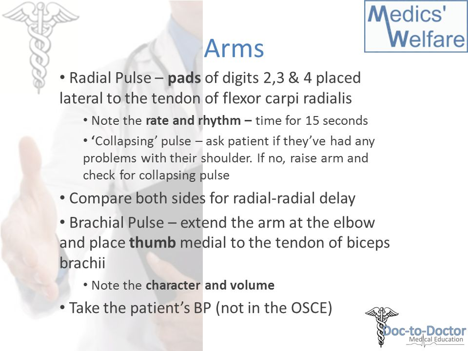 Arms Radial Pulse – pads of digits 2,3 & 4 placed lateral to the tendon of flexor carpi radialis Note the rate and rhythm – time for 15 seconds 'Collapsing' pulse – ask patient if they've had any problems with their shoulder.