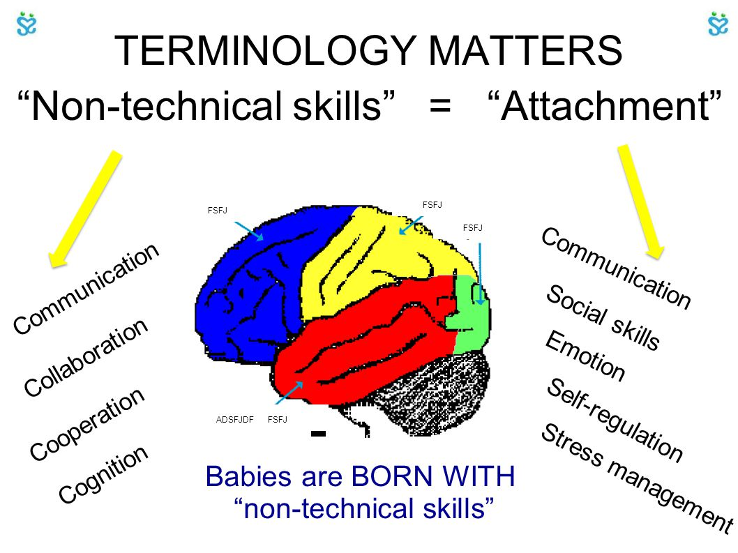 TERMINOLOGY MATTERS Non-technical skills = Attachment Collaboration Cooperation Cognition Communication Stress management Social skills Self-regulation Emotion Babies are BORN WITH non-technical skills FSFJ ADSFJDF FSFJ FSFJ