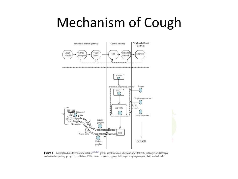 Mechanism of Cough