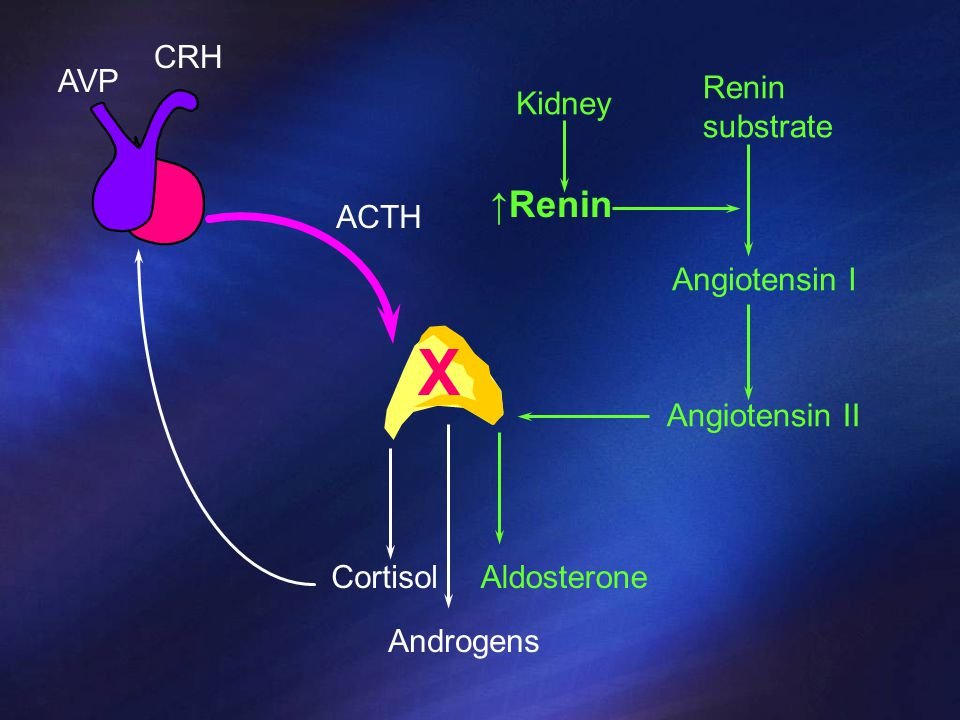 Primary Adrenal Insufficiency Damage to adrenal gland All 3 hormones are affected Increase compensation due to lack of feed back – High ACTH levels – High Renin levels