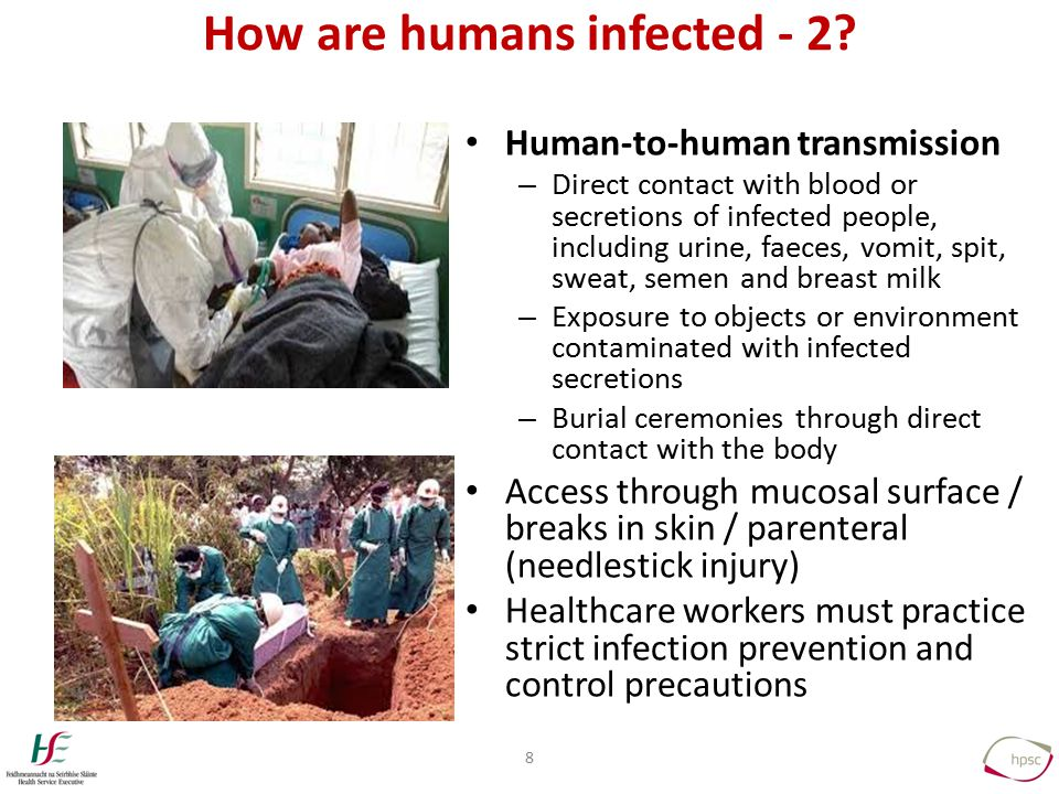 How are humans infected - 2.
