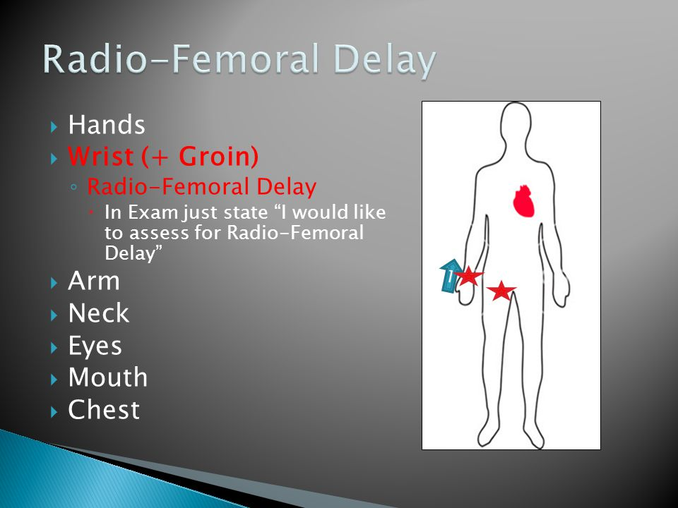  Hands  Wrist (+ Groin) ◦ Radio-Femoral Delay  In Exam just state I would like to assess for Radio-Femoral Delay  Arm  Neck  Eyes  Mouth  Chest 1