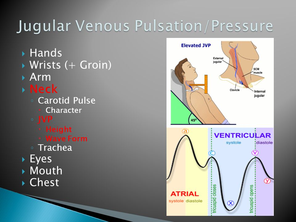  Hands  Wrists (+ Groin)  Arm  Neck ◦ Carotid Pulse  Character ◦ JVP  Height  Wave Form ◦ Trachea  Eyes  Mouth  Chest 1 2