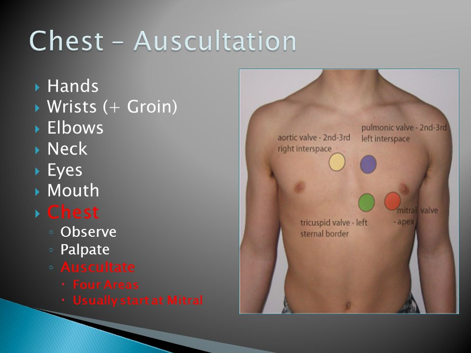  Hands  Wrists (+ Groin)  Elbows  Neck  Eyes  Mouth  Chest ◦ Observe ◦ Palpate ◦ Auscultate  Four Areas  Usually start at Mitral 1 2 3