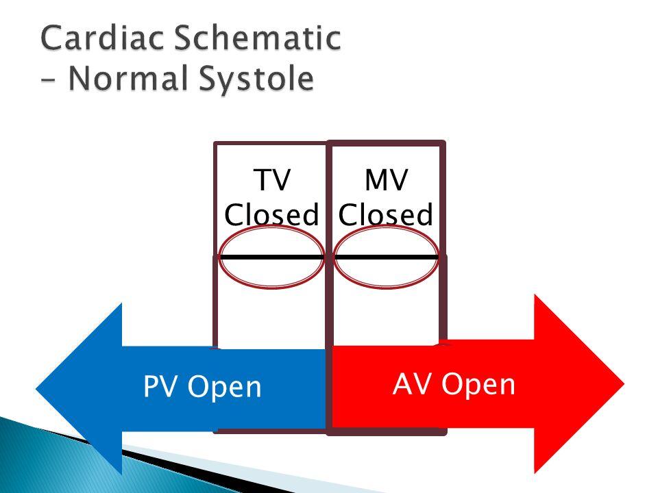TV Closed MV Closed AV Open PV Open