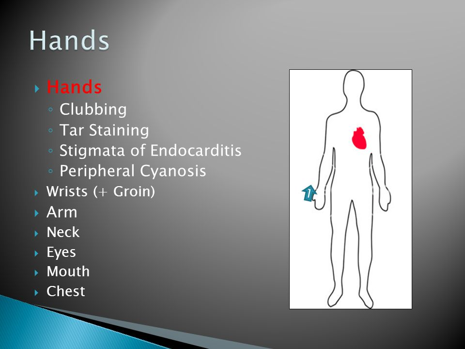  Hands ◦ Clubbing ◦ Tar Staining ◦ Stigmata of Endocarditis ◦ Peripheral Cyanosis  Wrists (+ Groin)  Arm  Neck  Eyes  Mouth  Chest 1
