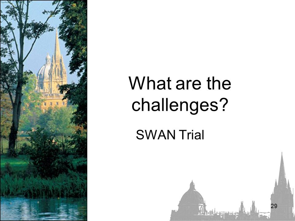 What are the challenges SWAN Trial 29