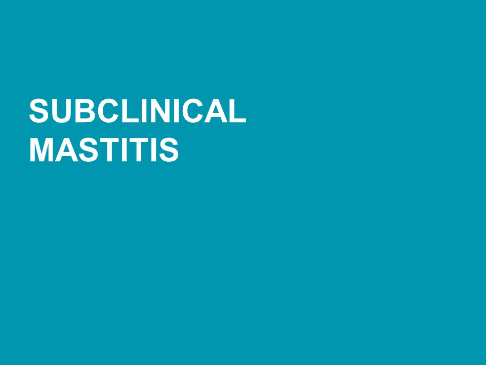 SUBCLINICAL MASTITIS