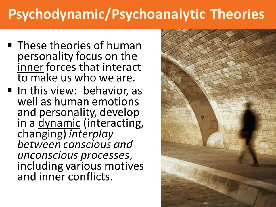  These theories of human personality focus on the inner forces that interact to make us who we are.  In this view: behavior, as well as human emotio