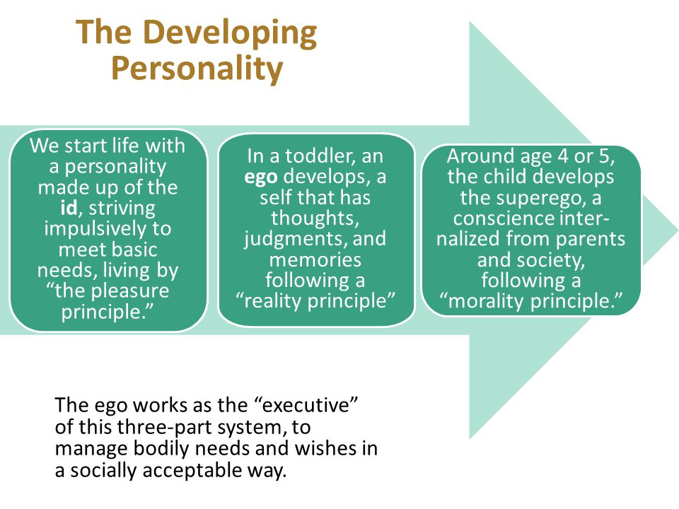 """We start life with a personality made up of the id, striving impulsively to meet basic needs, living by """"the pleasure principle."""" In a toddler, an ego"""
