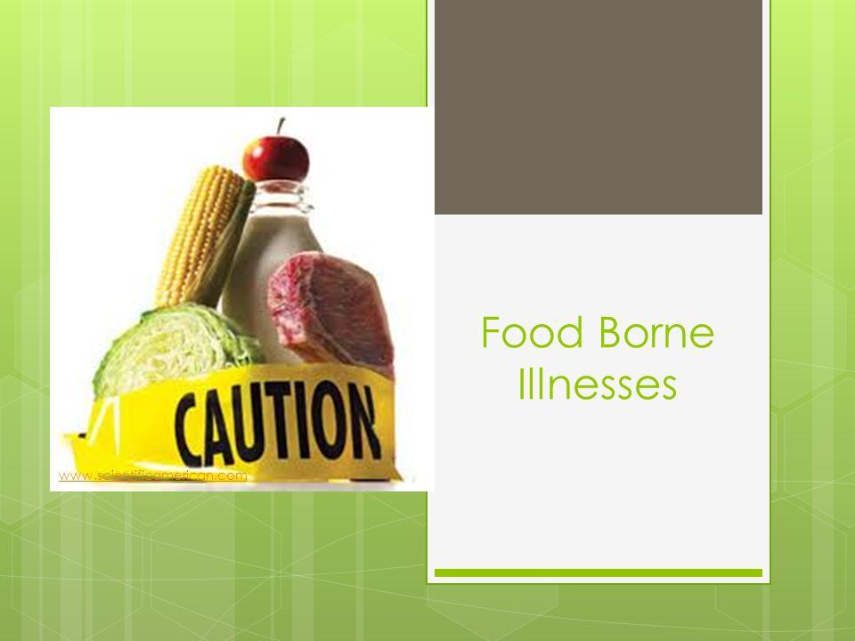 Food Borne Illnesses www.scientificamerican.com
