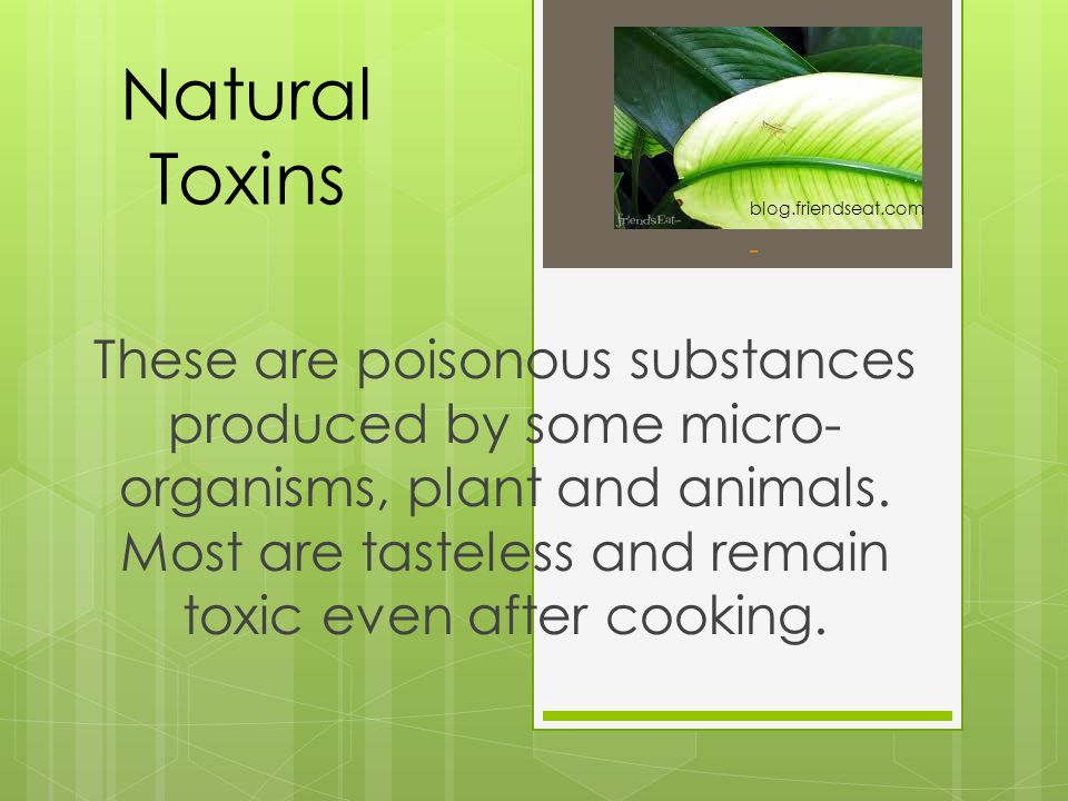 Natural Toxins These are poisonous substances produced by some micro- organisms, plant and animals. Most are tasteless and remain toxic even after coo