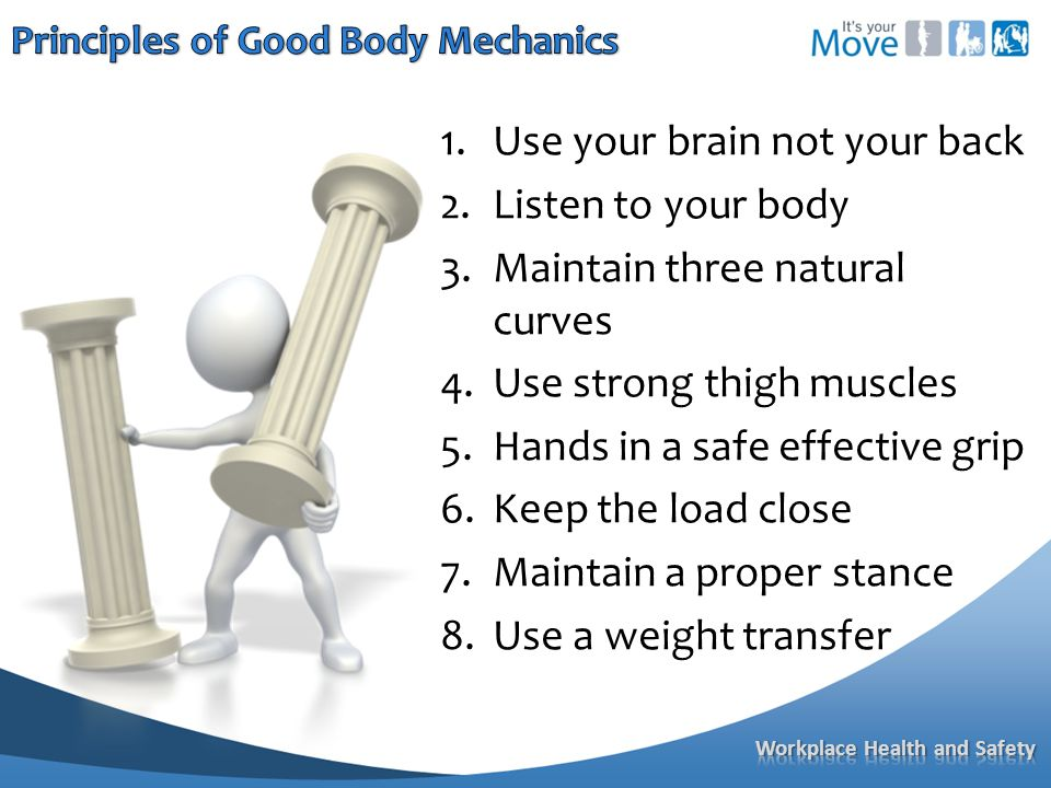 1.Use your brain not your back 2.Listen to your body 3.Maintain three natural curves 4.Use strong thigh muscles 5.Hands in a safe effective grip 6.Keep the load close 7.Maintain a proper stance 8.Use a weight transfer