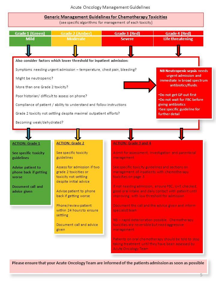 Guideline 19.