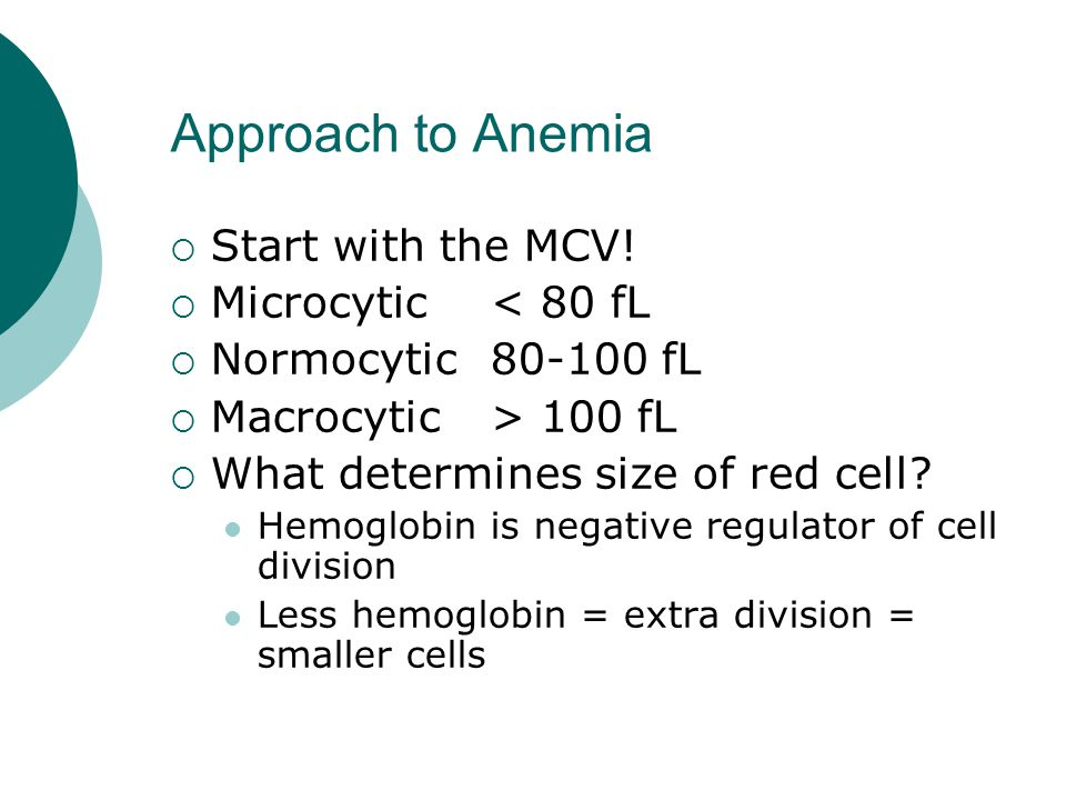 Approach to Anemia  Start with the MCV.