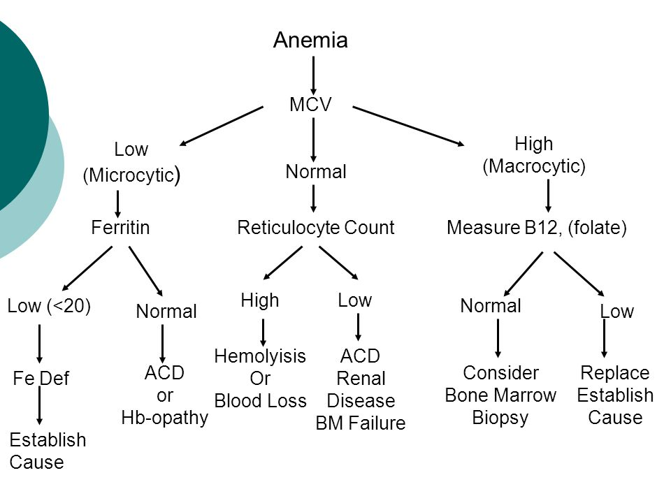 Anemia MCV Low (Microcytic ) High (Macrocytic) Measure B12, (folate)Ferritin Low (<20) Fe Def Establish Cause Normal ACD or Hb-opathy Low Normal Replace Establish Cause Consider Bone Marrow Biopsy Reticulocyte Count LowHigh ACD Renal Disease BM Failure Hemolyisis Or Blood Loss Normal
