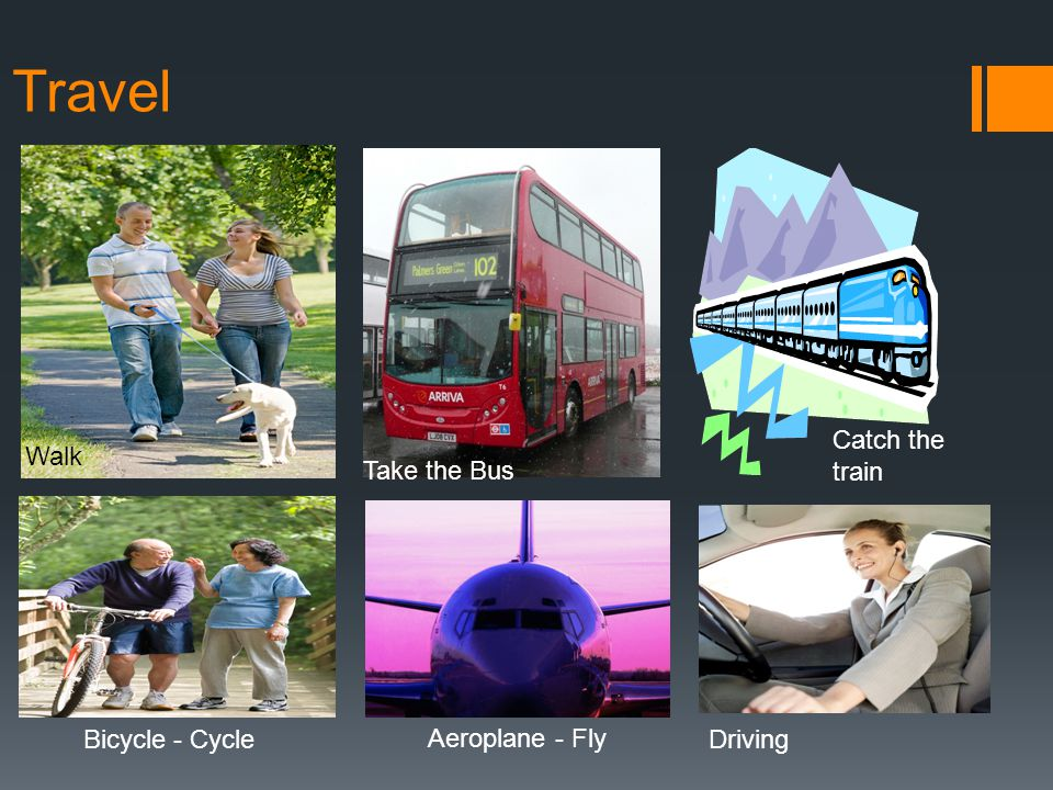 Travel Walk Take the Bus Catch the train Bicycle - Cycle Aeroplane - Fly Driving