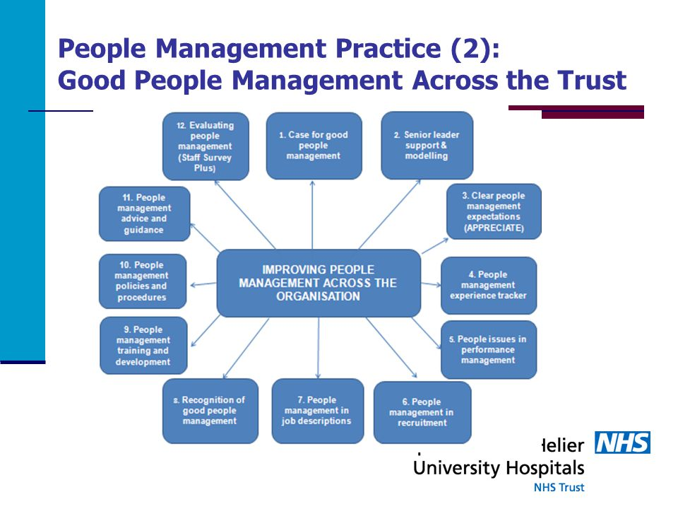 People Management Practice (2): Good People Management Across the Trust