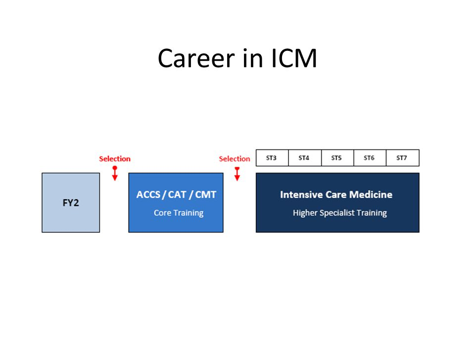 Career in ICM