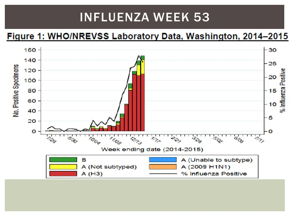 INFLUENZA WEEK 53