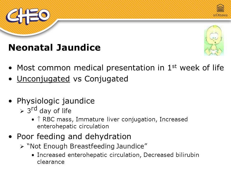 Neonatal Jaundice Most common medical presentation in 1 st week of life Unconjugated vs Conjugated Physiologic jaundice  3 rd day of life  RBC mass, Immature liver conjugation, Increased enterohepatic circulation Poor feeding and dehydration  Not Enough Breastfeeding Jaundice Increased enterohepatic circulation, Decreased bilirubin clearance
