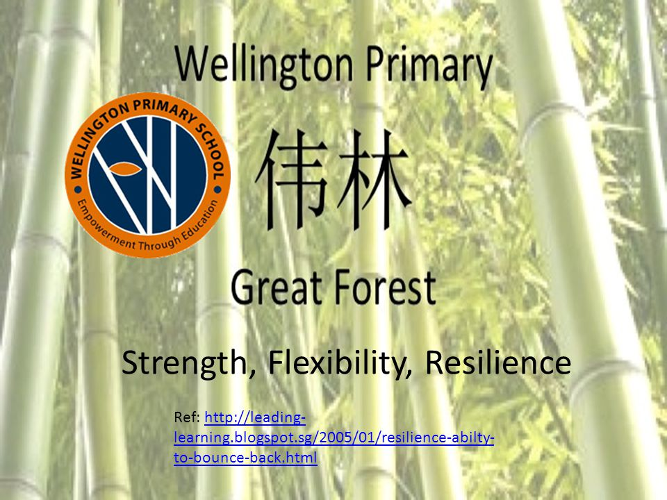 Strength, Flexibility, Resilience Ref: http://leading- learning.blogspot.sg/2005/01/resilience-abilty- to-bounce-back.htmlhttp://leading- learning.blogspot.sg/2005/01/resilience-abilty- to-bounce-back.html