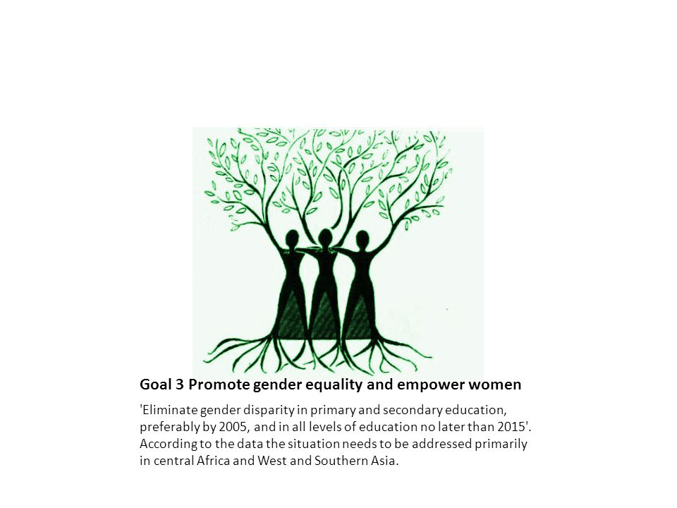 Goal 3 Promote gender equality and empower women Eliminate gender disparity in primary and secondary education, preferably by 2005, and in all levels of education no later than 2015 .