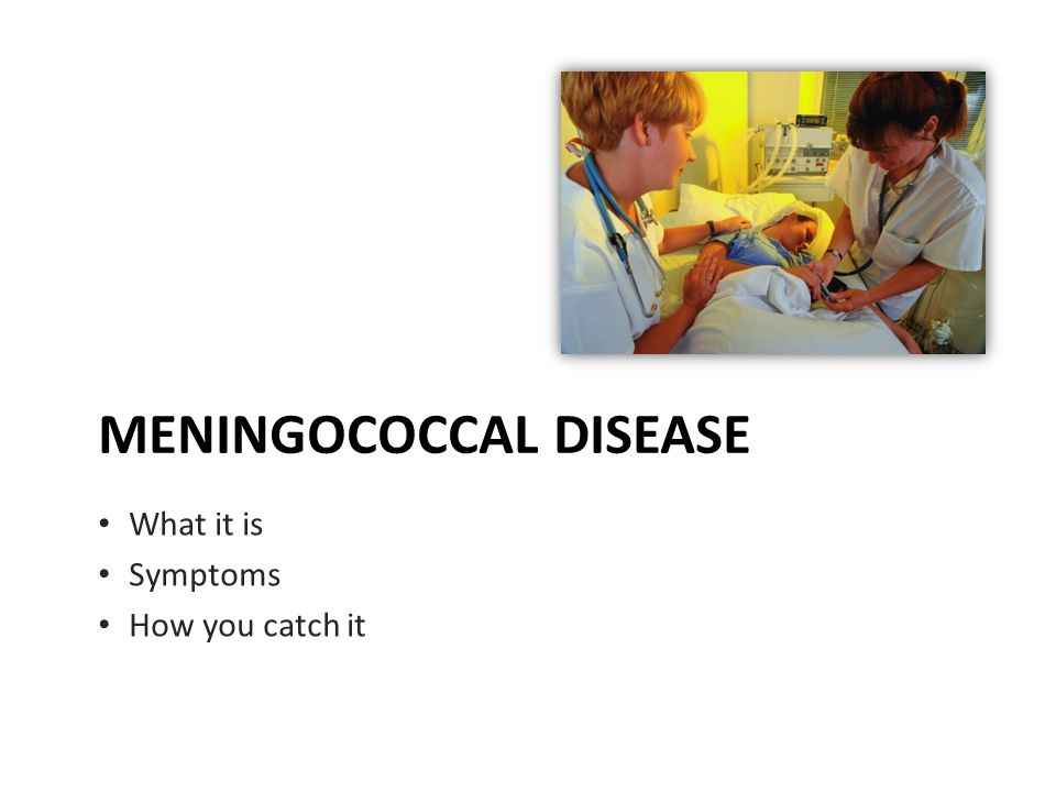 MENINGOCOCCAL DISEASE What it is Symptoms How you catch it