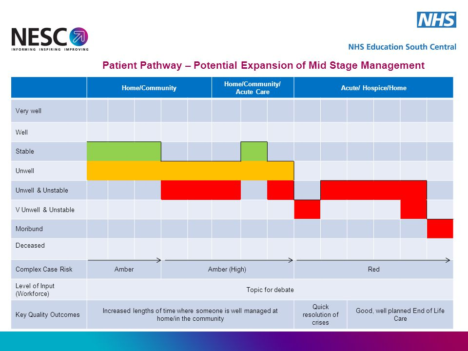 Patient Pathway – Potential Expansion of Mid Stage Management Home/Community Home/Community/ Acute Care Acute/ Hospice/Home Very well Well Stable Unwell Unwell & Unstable V Unwell & Unstable Moribund Deceased Complex Case RiskAmberAmber (High)Red Level of Input (Workforce) Topic for debate Key Quality Outcomes Increased lengths of time where someone is well managed at home/in the community Quick resolution of crises Good, well planned End of Life Care