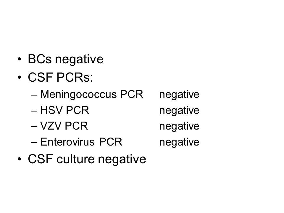 BCs negative CSF PCRs: –Meningococcus PCR negative –HSV PCR negative –VZV PCR negative –Enterovirus PCR negative CSF culture negative