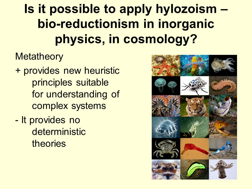 10 Is it possible to apply hylozoism – bio-reductionism in inorganic physics, in cosmology.